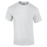 Ultra cotton? adult t-shirt